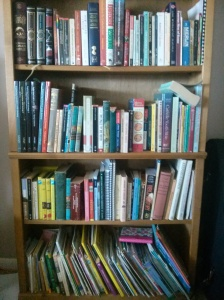 The kid's bookshelf. They have read far more than I have.
